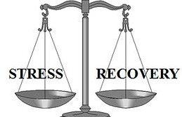 Balance of imposed stress and adequate recovery